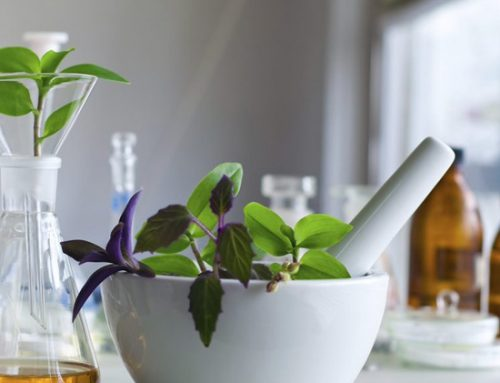 Peppermint Oil Benefits & Uses